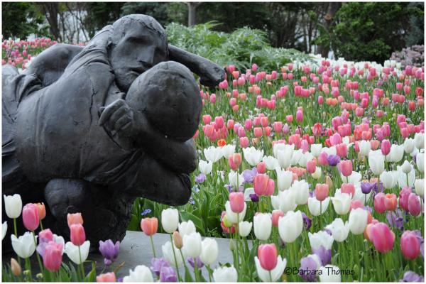 Smashing Tulips