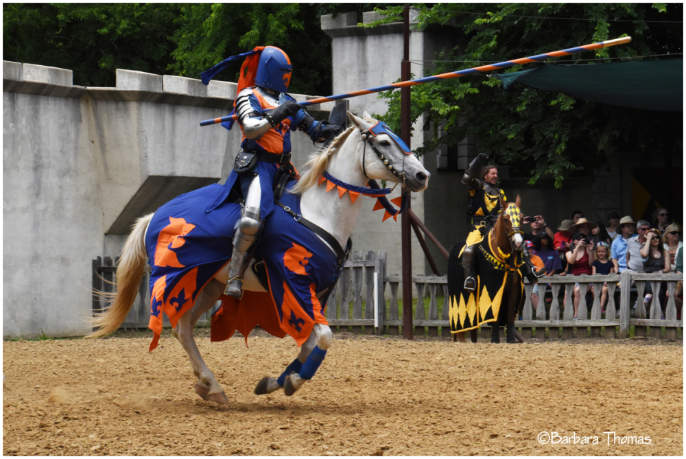 My Knight in Shining Armor