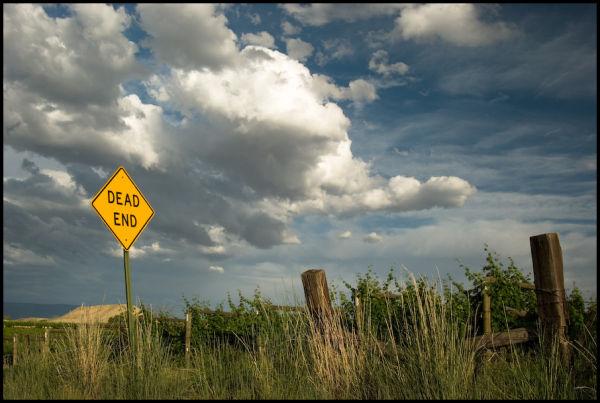 Dead End Vinyard