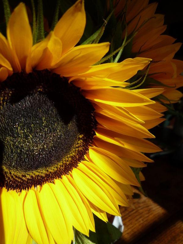 Give me a bit sun...:)