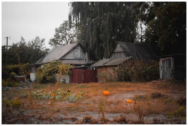 Piski, village, houses, garden