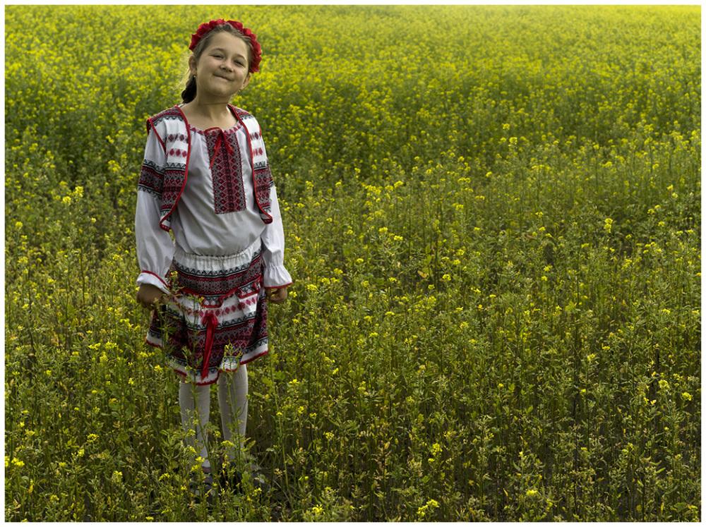 Summerday in Ukraine