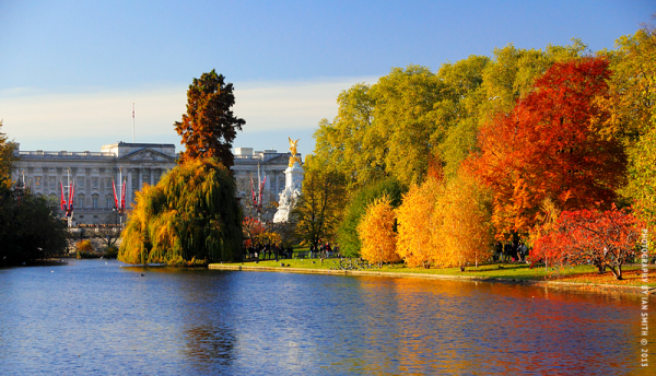 View of Buckingham Palace from St James's Park