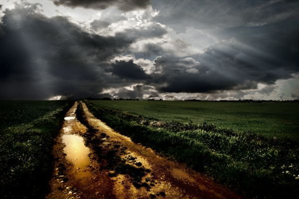 farm track after rain