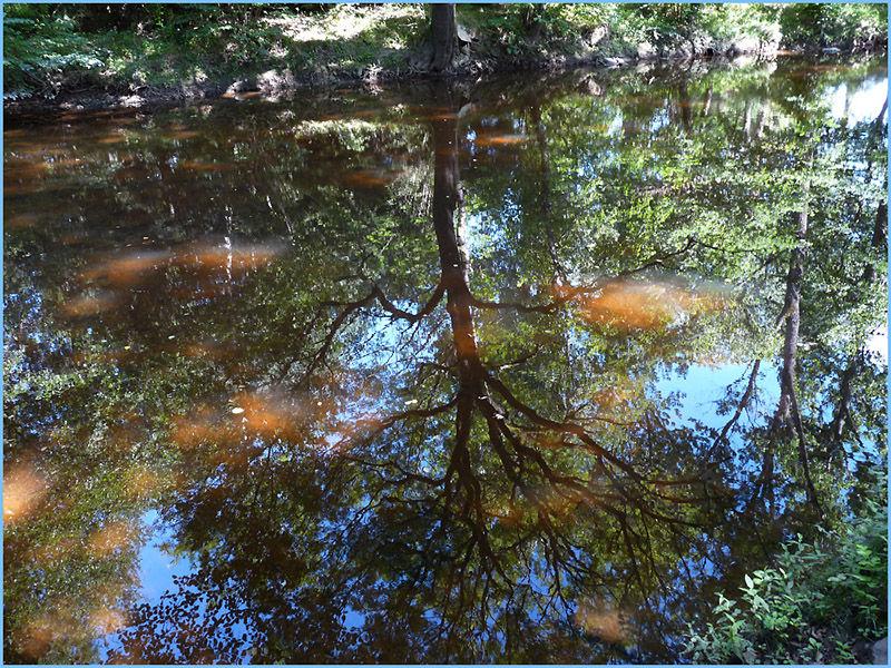 La rivière Dore