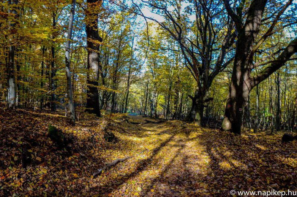 weekend ride in Pilis