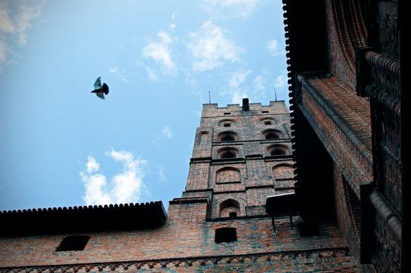 castle & pigeon