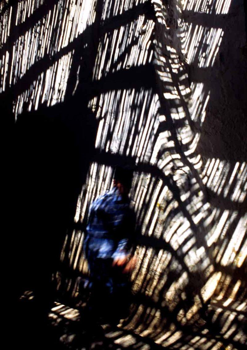 La part de l'ombre