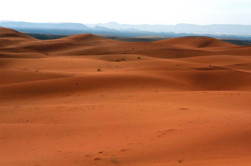 Impression désert 2