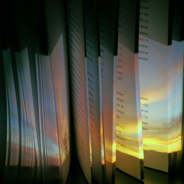 L'ivre lumière du livre 4