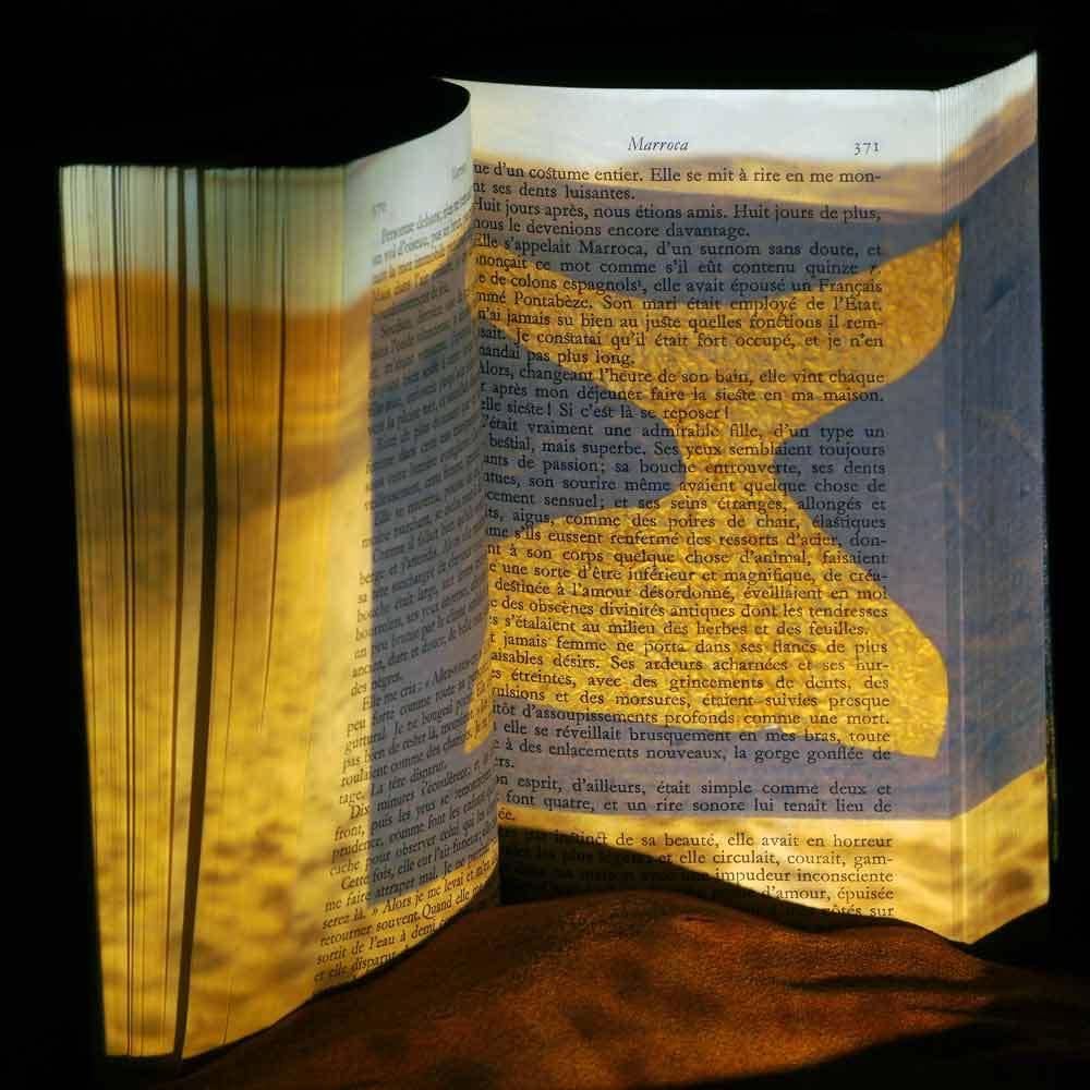 L'ivre lumière du livre 26