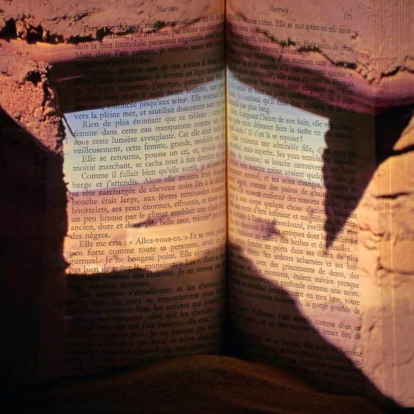 L'ivre lumière du livre 28