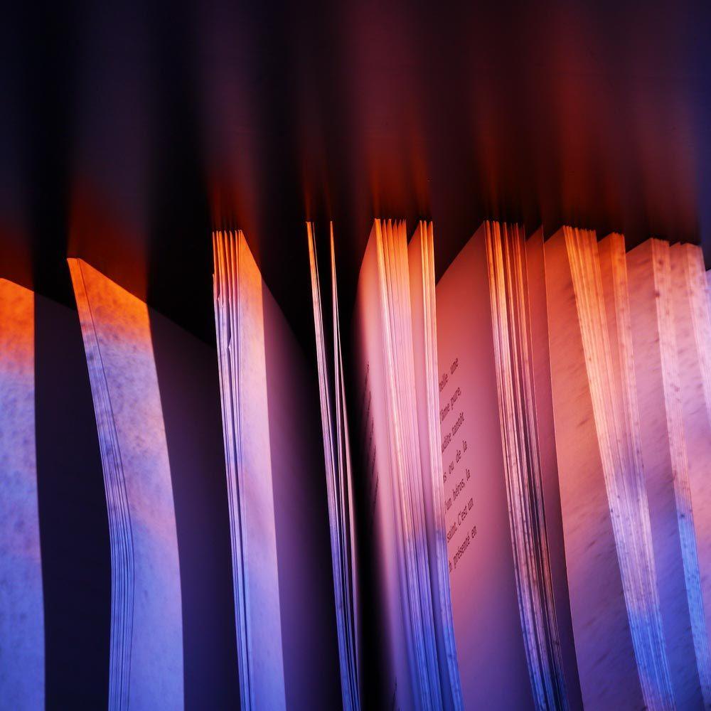 L'ivre lumière du livre 41