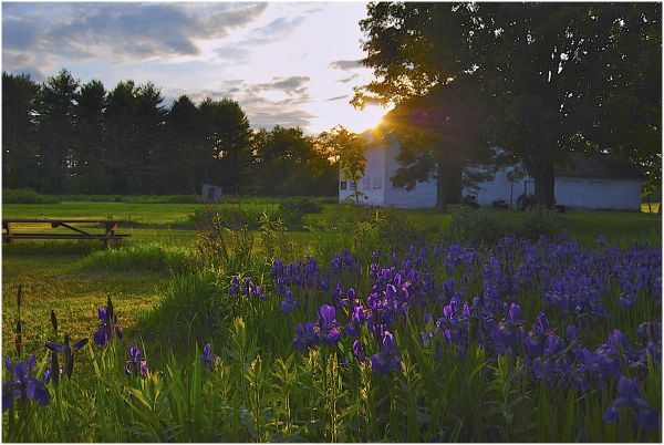 Sunset on Our farm in Maine