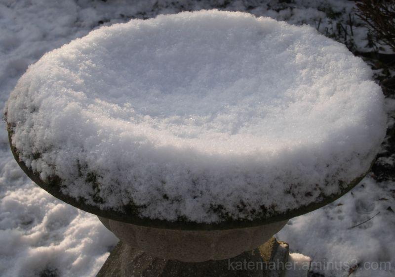 snow chalice