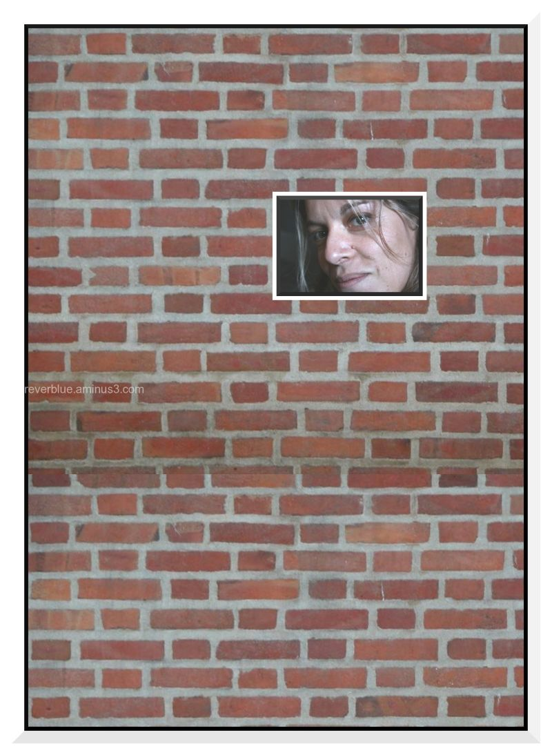 ANOTHER BRICK IN THE WALL ( SHE IS.....34)