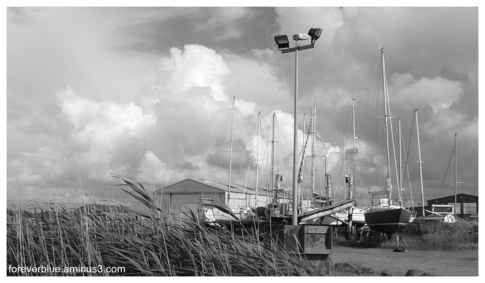 Aminus3 photography community - Vent d ouest noirmoutier ...