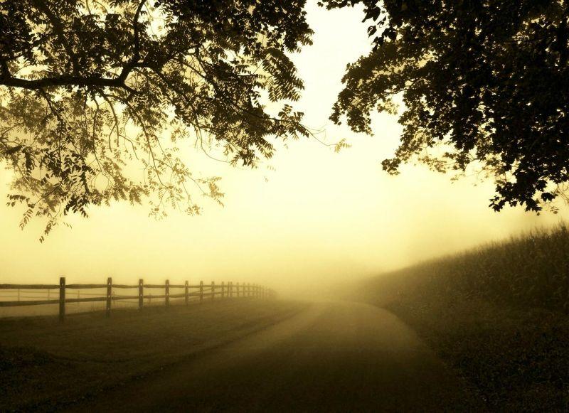 A Quiet Drive