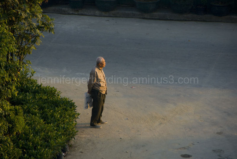 Old Man and the Sunset