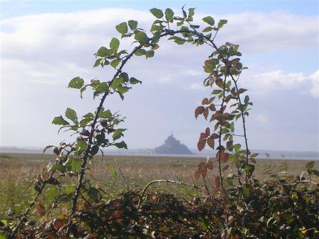"""Mont St Michel """"couronné"""""""