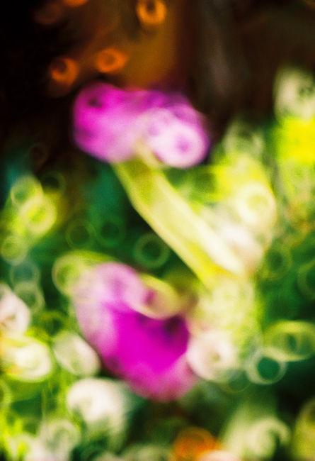 Light and Color Sensation