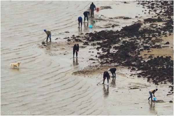 Big tide (ils trouveront pas mon nonosse!)