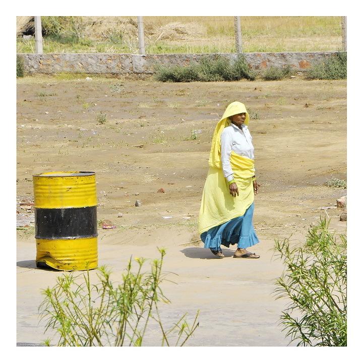 Le tonneau jaune _/\_ The Yellow barrel