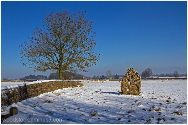 The Long Stone Hampton Fields
