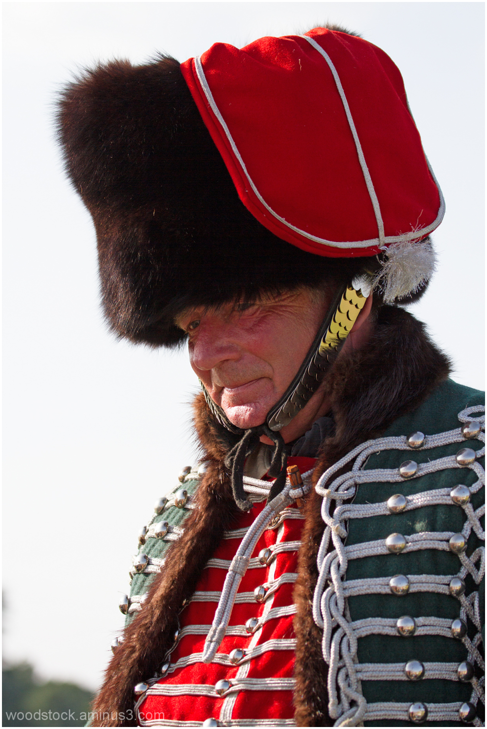 French Hussar c 1815