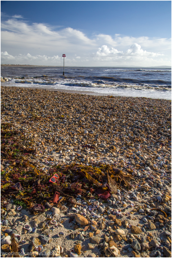 'Shades' On The Beach