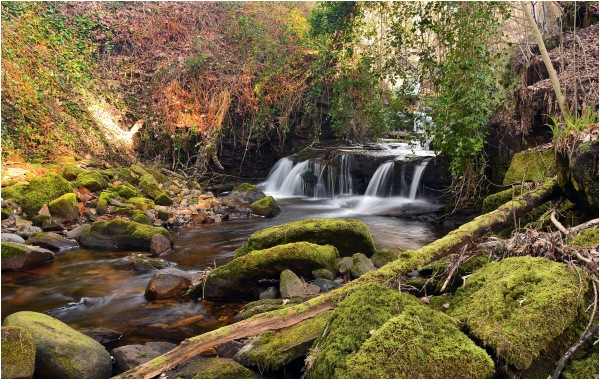 Garell Glen,Kilsyth,Scotland