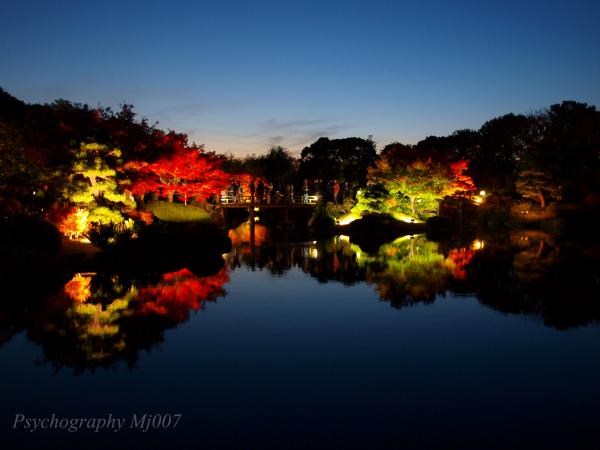 japanese garden in Daisen park