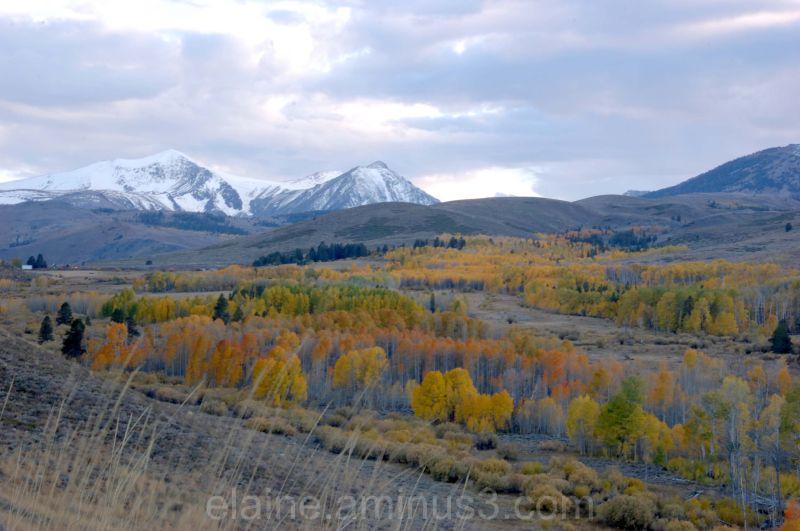 Eastern Sierra Nevada Mountains