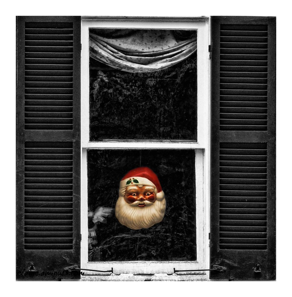 Santa in the Window