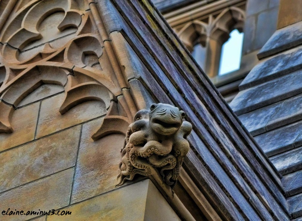cathedral grotesque