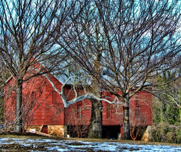 red barn and trees