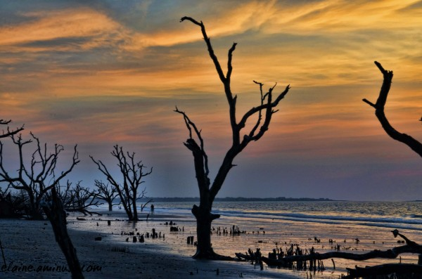 boneyard beach sunrise