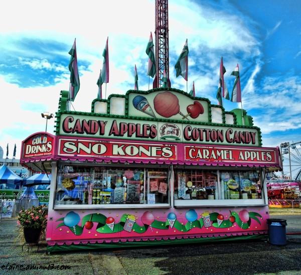 fair food stand