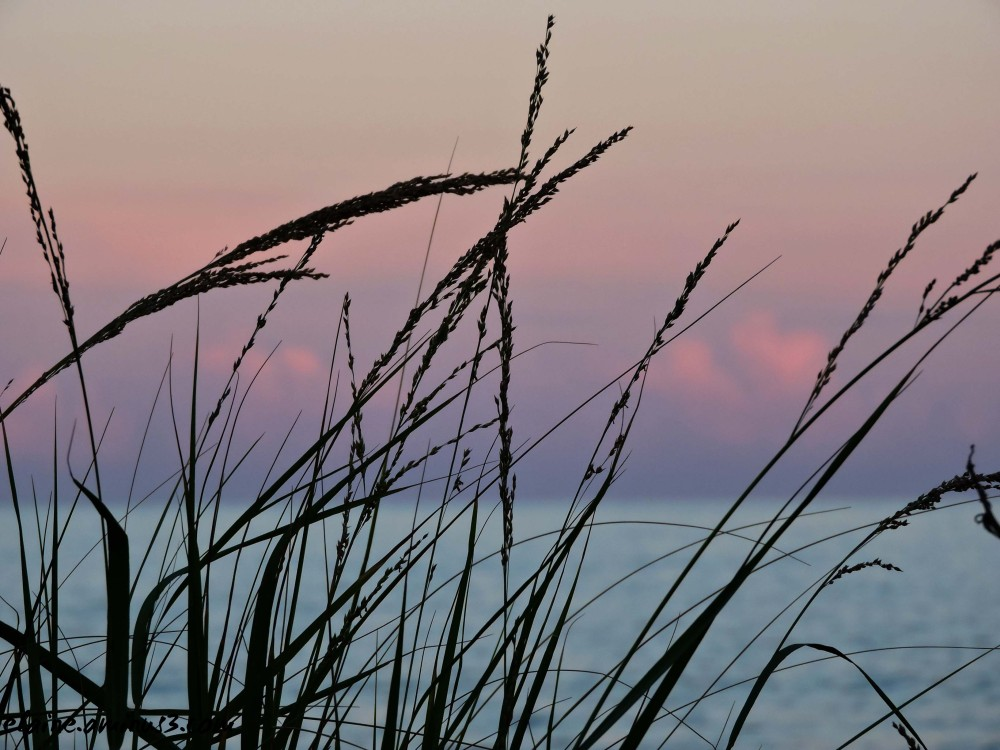 sunset Rehoboth Beach