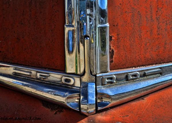 truck emblem