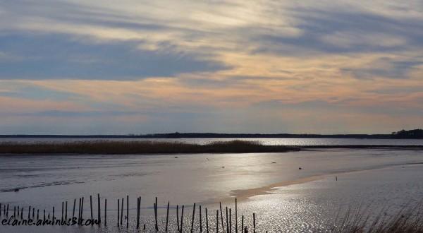 blackwater wildlife refuge