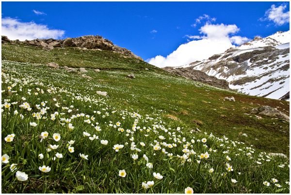Landscape, photoblog, alps,