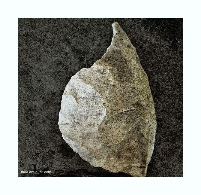 tools stoneage macro