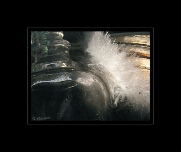 feather glass macro