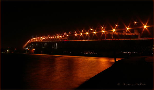Auckland Harbour Bridge Night Lights