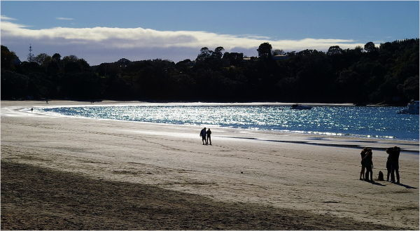 Beach, Late Sun, Sparkling Water, NZ