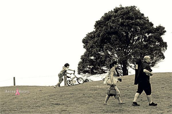 Family, Park, NZ