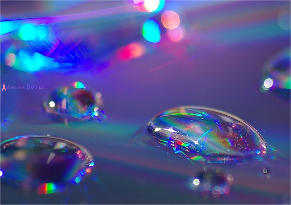 light, colours, droplets, water, cd, nz