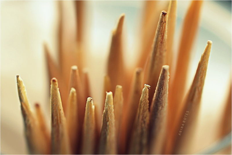 Toothpicks, Macro, 50mm