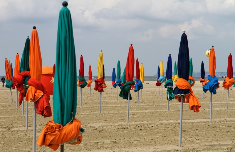 Les parasols refleurissent